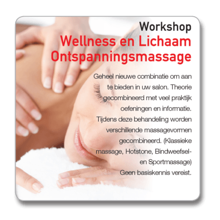 Workshop Wellness ontspanningsmassage Lichaam
